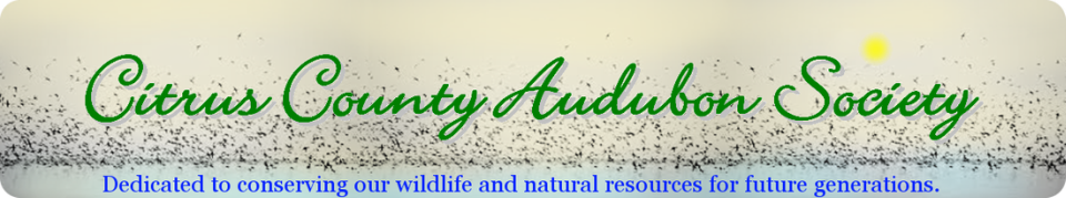 Citrus County Audubon